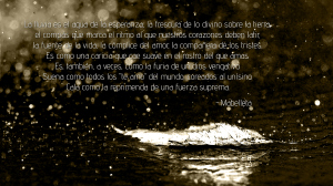 Rain1+m